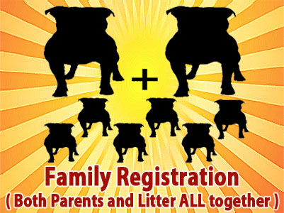 APBR PitBull Family registration