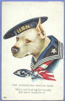 military pit bull poster