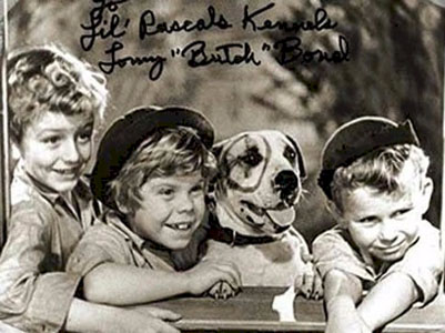 little rascals and petey the pit bull