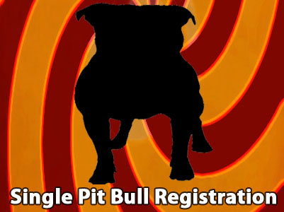 APBR PitBull single Pit Bull registration
